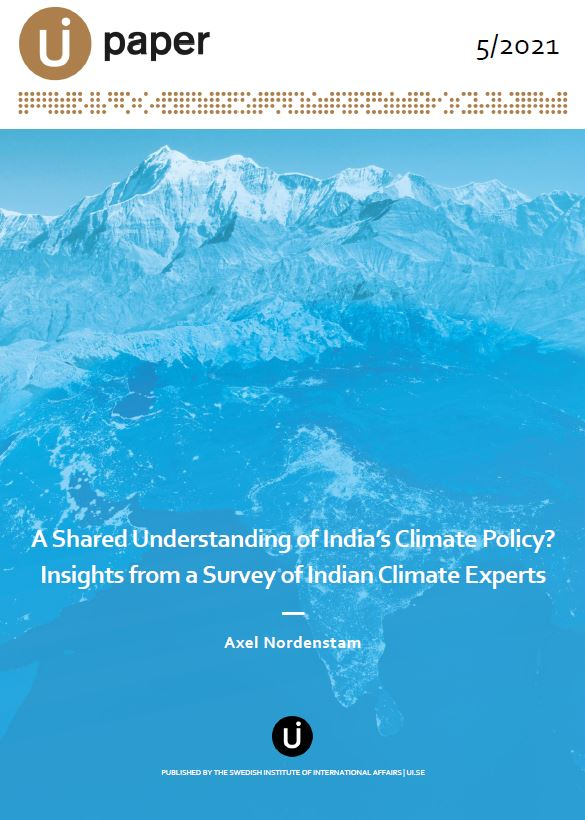 A Shared Understanding of India's Climate Policy? Insights from a Survey of Indian Climate Experts