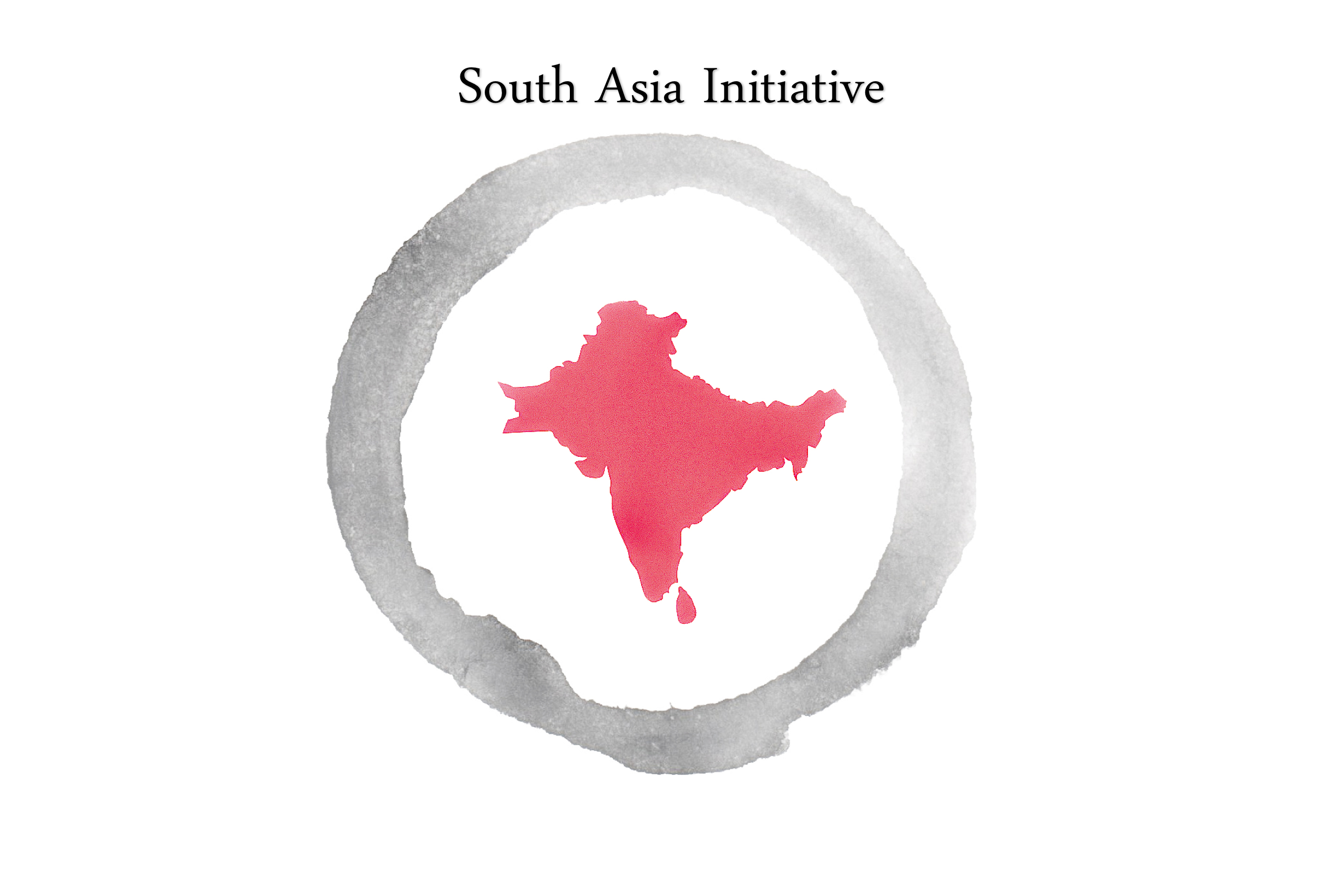 The South Asia Initiative
